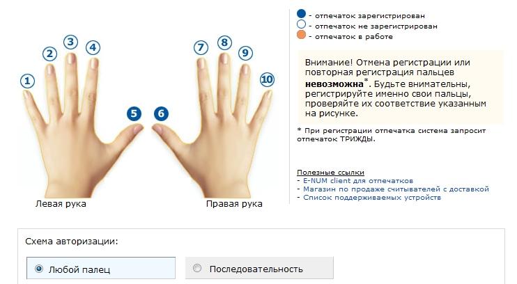 Авторизация по пальцам при помощи E-num